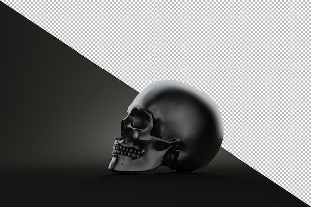 Cranio umano di natura morta su priorità bassa nera