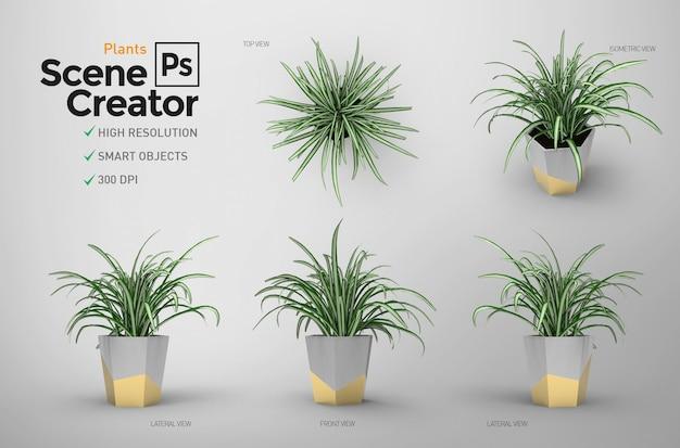Creador de escena. plantas elementos separados