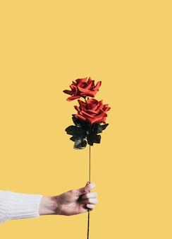 Dando una rosa para el día de san valentín