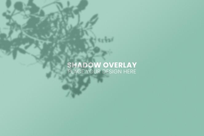 Deja el concepto transparente de efecto de superposición de sombras