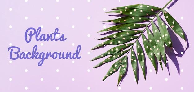 Dibujo realista de plantas con puntos blancos