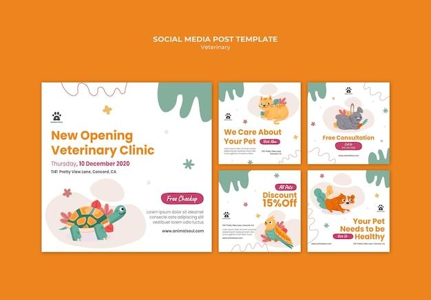 Dierenarts kliniek sociale media post-sjabloon