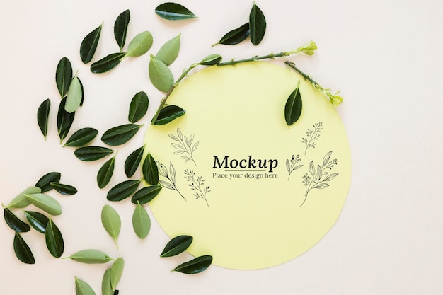 Disposición de la tarjeta maqueta con hojas.