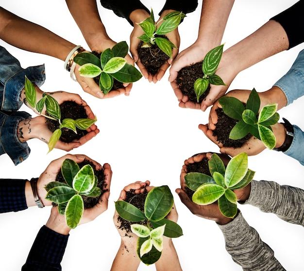 Diverse mensen houden van planten in hun handen