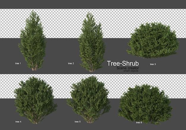 Diverse soorten bomen en struiken