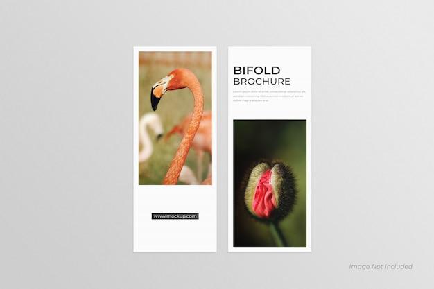 Dl bi-fold brochures mockup