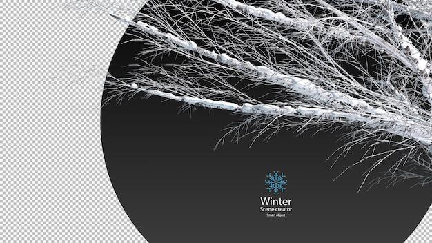 Droge boomtakken bedekt met sneeuw uitknippad