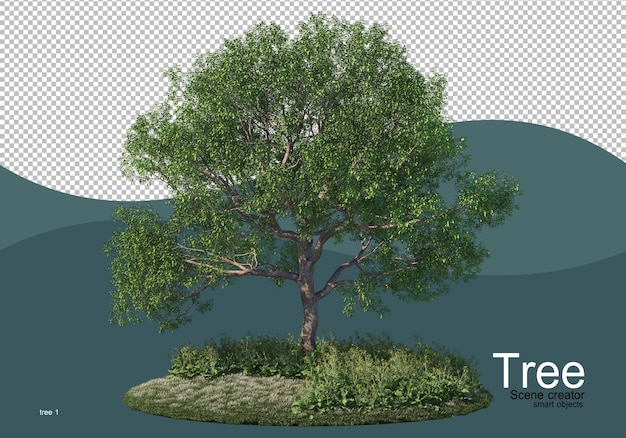 Een grote boom midden in het veld Premium Psd