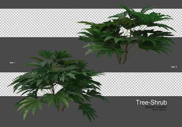 Een grote verscheidenheid aan bomen en struiken