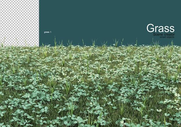 Een verscheidenheid aan gras- en grindontwerpen