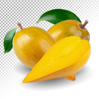 Eifruit, canistel, gele geïsoleerde sapote
