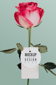 Flor color de rosa con una maqueta de etiqueta
