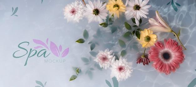 Floral spa concept mock-up