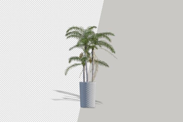 Flores de plantas en macetas en 3d rendering aislado