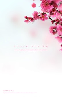 Fondo de flores de primavera hermosa