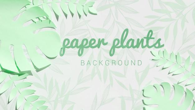 Fondo de hojas de monstera verde lima
