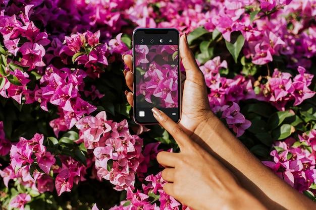 Fotografia di fiori