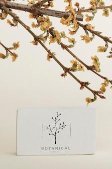 Gedroogde forsythia-tak met een kaartmodel op een beige achtergrond