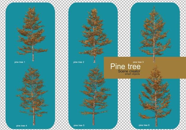 Geef verschillende patronen van pijnbomen weer