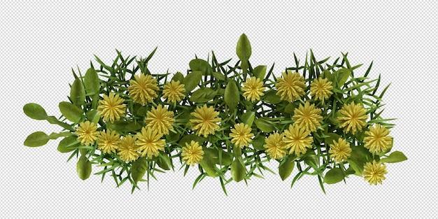 Geïsoleerde struik met mooie bloemen