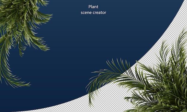 Gele palmbladeren voor scènedecoratie