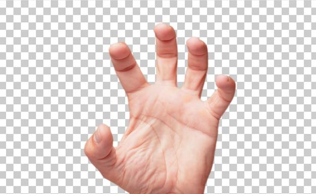 Gesto maschio isolato della stretta della mano