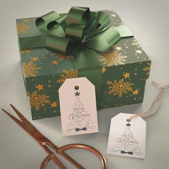 Grande regalo della palude avvolto con carta verde