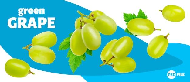 Groene druif die op witte achtergrond wordt geïsoleerd