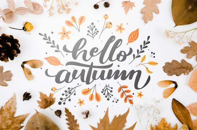 Hallo herfst belettering met bladeren op effen achtergrond