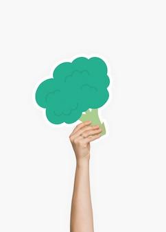 Hand met een broccoli karton prop