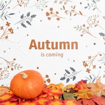 Herfst in komst met pompoen en gedroogde bladeren
