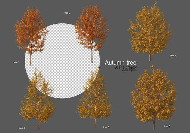 Herfstbomen verschillende soorten vele vormen