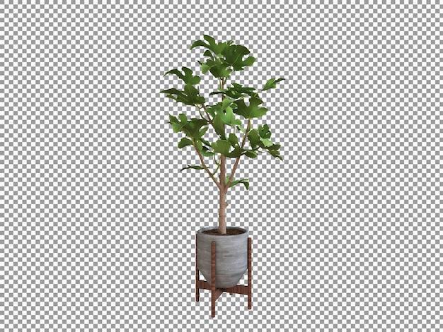 Hermosa planta en representación 3d aislada transparente