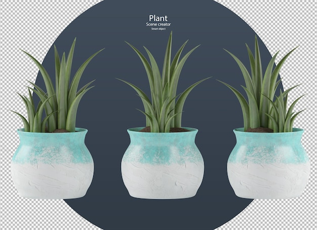 Hermosos varios tipos de plantas en maceta con trazado de recorte aislado