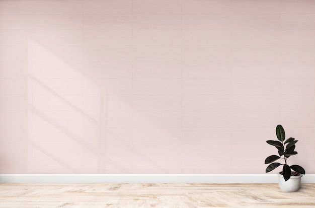 Higo de goma en una habitación rosa.