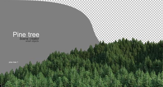 Hoge berg met dennen verschillende soorten volwassenen