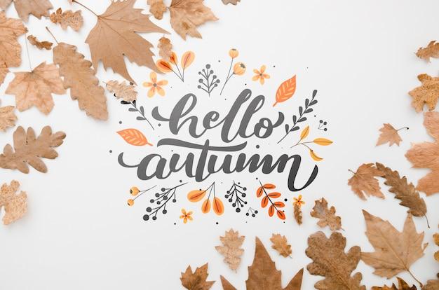 Hojas marrones enmarcando hola otoño sobre fondo liso