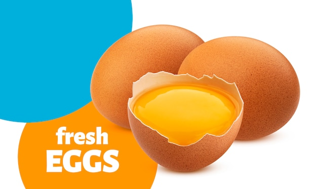 Huevos de gallina aislados