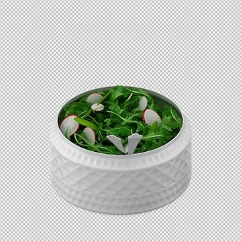 Il salat isometrico 3d rende