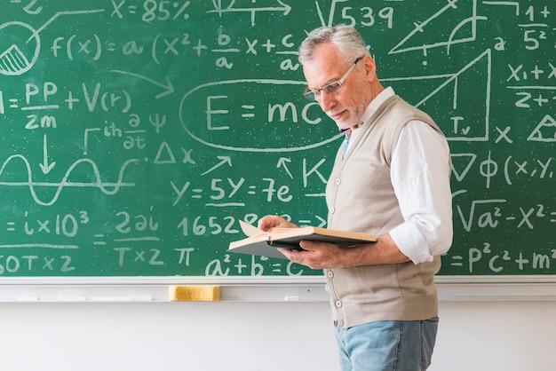 Insegnante di matematica che esamina il libro