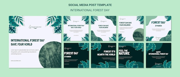 Instagram-berichtenverzameling voor internationale bosdagviering