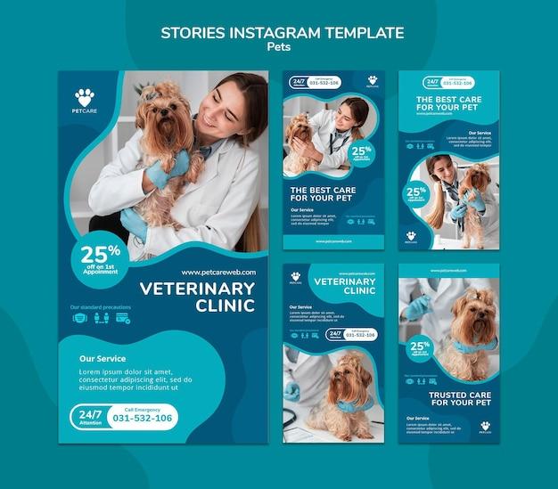 Instagram-verhalencollectie voor dierenverzorging met vrouwelijke dierenarts en yorkshire terrier-hond
