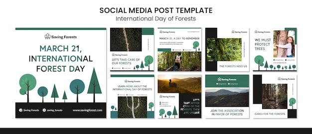 Internationale dag van de bossen instagram-berichten