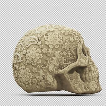 Isometrische geïsoleerde schedel 3d geeft terug