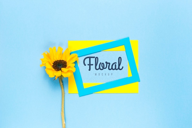 Kleurrijke frames met gele daisy