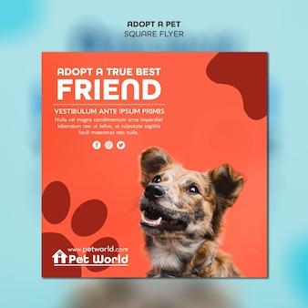 Kwadraat flyer sjabloon voor adoptie van huisdieren met dof