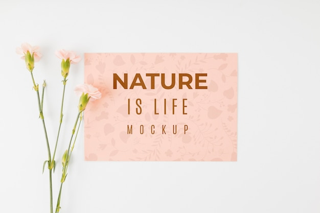 La natura del mock-up piatto è una citazione di vita