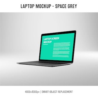 Laptop schermmodel