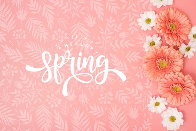 Lay flat de margaritas de primavera