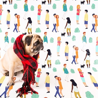 Lindo perro vistiendo chal de invierno
